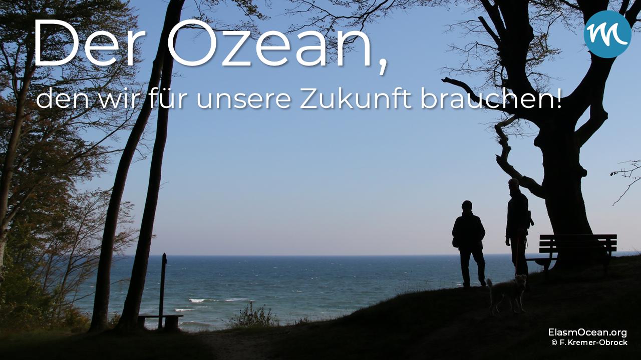 """Dekoratives Bild: Personen am Meer mit eingeblendetem Text """"Der Ozean, den wir für unsere Zukunft brauchen!"""""""