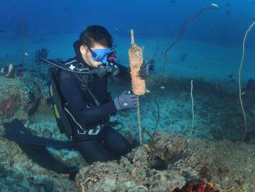 Dekoratives Bild: Taucher montiert technisches Gerät am Meeresboden