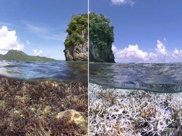 Dekoratives Bild: Vorher-Nachher, links eine Insel hinter einem gesundem Korallenriff, rechts die gleiche Insel vor weiß-gebleichten (toten) Korallen